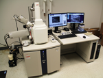 Scanning electron microscope (SEM) with up to 100,000x magnification